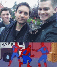 Funny, Spider, and Verse: Spider-verse