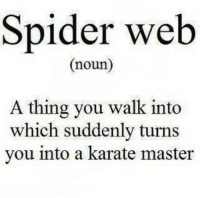 misunderstood spider: Spider web  Gnoun)  A thing you walk into  which suddenly turns  you into a karate master