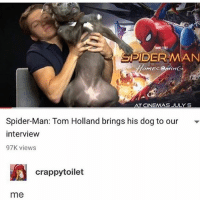 Love, Memes, and Spider: SPIDERMAN  AT CINEMAS JULY 5  Spider-Man: Tom Holland brings his dog to our  intervievw  97K viewS  crappytoilet  me I love him with such a passion