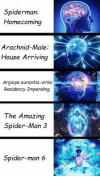 Be Like, Spider, and SpiderMan: Spiderman  Homecoming  Arachnid-Male:  House Arriving  Argiope aurantia-virile:  Residency Impending  The Amazing  Spider-Man 3  Spider-man 6