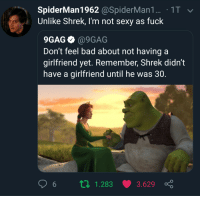 Me_irl: SpiderMan1962 @SpiderMan1. 1T  Unlike Shrek, I'm not sexy as fuck  9GAG @9GAG  Don't feel bad about not having a  girlfriend yet. Remember, Shrek didn't  have a girlfriend until he was 30.  6 п 1.283 3.629 ç Me_irl