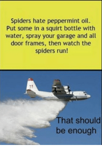 Run, Squirt, and Spiders: Spiders hate peppermint oil.  Put some in a squirt bottle with  water, spray your garage and all  door frames, then watch the  spiders run!  31  That should  be enough