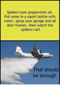 Run, Squirt, and Good: Spiders hate peppermint oil.  Put some in a squirt bottle with  water, spray your garage and all  door frames, then watch the  spiders run!  31  That should  be enough <p>Finally, A Good Solution.</p>
