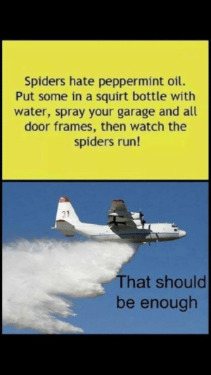 Who can relate: Spiders hate peppermint oil.  Put some in a squirt bottle with  water, spray your garage and all  door frames, then watch the  spiders run!  That should  be enough Who can relate