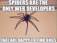 Memes, Saw, and Happy: SPIDERSARE THE  ONLY WEBDEVELOPERS  THAT ARE HAPPY TO FIND BUGS Saw this on r/memes today!