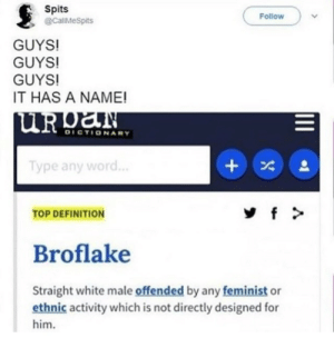 Tumblr, Blog, and Definition: Spits  @calMespits  Follow  GUYS!  GUYS!  GUYS!  IT HAS A NAME!  ур  TOP DEFINITION  Broflake  Straight white male offended by any feminist or  ethnic activity which is not directly designed for  him. lgbtslayaf:IT HAS A NAME HAHHA