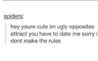 Cute, Sorry, and Ugly: splders:  hey youre cute im ugly opposites  attract you have to date me sorry i  dont make the rules meirl