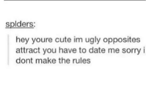 meirl: splders:  hey youre cute im ugly opposites  attract you have to date me sorry i  dont make the rules meirl
