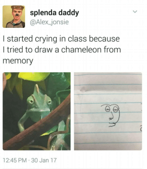 Crying, Target, and Tumblr: splenda daddy  @Alex_jonsie  I started crying in class because  l tried to draw a chameleon from  memory  12:45 PM 30 Jan 17 sportsfemme:My girlfriend suddenly buried her face in her hands like something was wrong and it took like 10 minutes to get her to tell me what was going on and she showed me this post