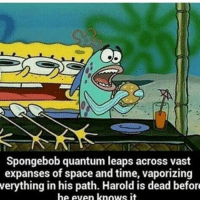 Spongebob Rainbow: Spongebob quantum leaps across vast  expanses of space and time, vaporizing  verything in his path. Harold is dead before  he even knows it