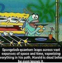 Spongebob Rainbow: Spongebob quantum leaps across vast  expanses of space and time, vaporizing  verything in his path.Haroldis dead befo  hceven kngws it