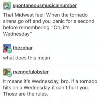 "Memes, Tumblr, and Mean: spontaneousmusicalnumber  That Midwest feel: When the tornado  sirens go off and you panic for a second  before remembering ""Oh, it's  Wednesday""  昆  thezohar  what does this mean  rvengefulobster  It means it's Wednesday, bro. If a tornado  hits on a Wednesday it can't hurt you.  Those are the rules. { funnytumblr textposts funnytextpost tumblr funnytumblrpost tumblrfunny followme tumblrfunny textpost tumblrpost haha}"