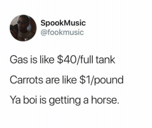 Dank, Horse, and 🤖: SpookMusic  @fookmusic  Gas is like $40/full tank  Carrots are like $1/pound  Ya boi is getting a horse I say neigh.