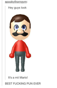 Best Puns Ever: spookythorngym  Hey guys look  It's a mii Mario!  BEST FUCKING PUN EVER