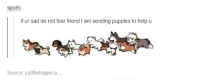 Friends, Funny, and Puppies: spork  if ur sad do not fear friend i am sending puppies to help u  Source: pullthetrigger-p... Not all heroes wear capes
