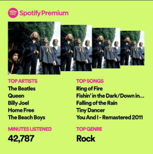Pretty solid Wrap Up imo: Spotify Premium  TOP ARTISTS  TOP SONGS  Ring of Fire  Fishin' in the Dark/Down in...  The Beatles  Queen  Falling of the Rain  Tiny Dancer  You And I- Remastered 2011  Billy Joel  Home Free  The Beach Boys  MINUTES LISTENED  TOP GENRE  42,787  Rock Pretty solid Wrap Up imo