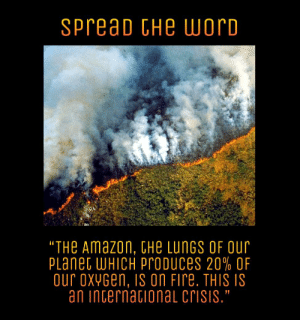 "Amazon, Fire, and Oxygen: SPreaD CHe worD  ""THe Amazon, tHe LUNGS OF OUr  PLanet WHICH Probuces 20% OF  our oxYGen, Is oN Fire. THIS IS  an internacionaL crisis."" Spread the Word"