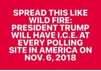 America, Fire, and Grandma: SPREAD THIS LIKE  WILD FIRE:  PRESIDENT TRUMP  WILL HAVE I.C.E. AT  EVERY POLLING  SITE IN AMERICA ON  NOV. 6, 2018 Grandma going full scare tactics.