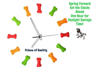 Daylight Savings Time, Memes, and Daylight Savings: Spring Forward  Set the Clocks  Ahead  One Hour for  Daylight Savings  Time!  Fidose of Reality POOKIE'S THOUGHT FOR THE DAY