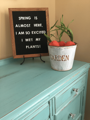Easter, Spring, and Board: SPRING IS  ALMOST HERE,  I AM SO EXCITED  I WET MY  PLANTS!  ARDEN Spring/Easter Letter board!