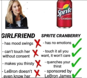 Dank, LeBron James, and Memes: Sprite  cranberry  GIRLFRIEND SPRITE CRANBERRY  has mood swings-has no emotions  -can't touch her  without consent  touch it all you  want, it won't care  - makes you thirsty quenches your  thirst  LeBron doesn't  X  sponsored by  LeBron James  even know her The better option. by 420-Neal-It FOLLOW 4 MORE MEMES.