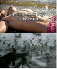 Cute, Tumblr, and Beach: spying on cute boys  on cute lbO  at the beach. fakehistory:6th of June 1944 / D-day