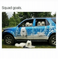 MAJOR SQUAD GOALS THESE DOGS ARE SO DAMN CUTE (@hilarious.ted): Squad goals. MAJOR SQUAD GOALS THESE DOGS ARE SO DAMN CUTE (@hilarious.ted)