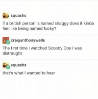 Scooby Doo, Fuck, and Time: squashs  if a british person is named shaggy does it kinda  feel like being named fucky?  craiganthonywells  Scooby Doo lwas  The first time I watched Scooby Doo I was  distraught  squashs  that's what I wanted to hear fuck and scoob (@marutaro)