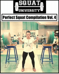 """Lifting big weight alone is NOT impressive. Lifting big weight with GREAT TECHNIQUE - now that's something to be admired.🙌🏼 . Here is a compilation of some amazing women with incredible squat technique. Learn from them 👇🏼 1️⃣Li Yajun (@yajun1215) 2️⃣Susan Salazar (@supers2o) 3️⃣Isabella von Weissenberg (@ivweissenberg) . Tag someone YOU think should be in the next """"Perfect Squat Compilation"""" 👊🏻 __________________________________ Squat University is the ultimate guide to realizing the strength to which the body is capable of. The information within these pages are provided to empower you to become a master of your physical body. Through these teachings you will find what is required in order to rid yourself of pain, decrease risk for injury, and improve your strength and athletic performance. ________________________________ Squat SquatUniversity Powerlifting weightlifting crossfit training wod workout gym exercisescience fit fitfam fitness fitspo oly olympicweightlifting hookgrip nike adidas lift: SQUAT  UNIVERSITY  Perfect Squat Compilation Vol. 4 Lifting big weight alone is NOT impressive. Lifting big weight with GREAT TECHNIQUE - now that's something to be admired.🙌🏼 . Here is a compilation of some amazing women with incredible squat technique. Learn from them 👇🏼 1️⃣Li Yajun (@yajun1215) 2️⃣Susan Salazar (@supers2o) 3️⃣Isabella von Weissenberg (@ivweissenberg) . Tag someone YOU think should be in the next """"Perfect Squat Compilation"""" 👊🏻 __________________________________ Squat University is the ultimate guide to realizing the strength to which the body is capable of. The information within these pages are provided to empower you to become a master of your physical body. Through these teachings you will find what is required in order to rid yourself of pain, decrease risk for injury, and improve your strength and athletic performance. ________________________________ Squat SquatUniversity Powerlifting weightlifting crossfit training wod workout gym exercisescience """