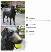 Bless Up, Love, and Memes: squigglydigg  Somebody gave our mascot statue a tennis ball.  penroseparticle  good he deserves it  tiffanarchy  he is a good boy  CD IMPORTANT REMINDER THAT EVEN AN INANIMATE OBJECT CAN BE AN EXTREMELY GOOD BOY DESERVING OF LOVE, ATTENTION AND CONCERN BLESS UP THANK YOU 🤗😂😂😂