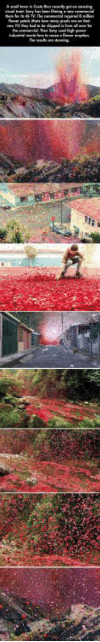 srsfunny:An Epic Explosion Of Beauty #Memes #meme https://t.co/XQoLTCAt3l: srsfunny:An Epic Explosion Of Beauty #Memes #meme https://t.co/XQoLTCAt3l