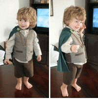 Tumblr, Blog, and Http: srsfunny:Little Frodo
