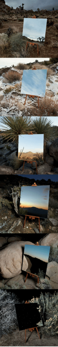 Tumblr, Blog, and Http: srsfunny:Photos Of Mirrors In The Desert