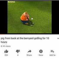 back at the barnyard: ssCartoon  pig from back at the barnyard golfing for 10  hours  8.1K views  4  Share  Save  Add to