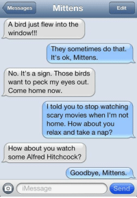 Memes, Movies, and Birds: sssagesMittens  Edit  A bird just flew into the  window!!!  They sometimes do that.  It's ok, Mittens.  No. It's a sign. Those birds  want to peck my eyes out.  Come home now  I told you to stop watching  scary movies when I'm not  home. How about you  relax and take a nap?  How about you watch  some Alfred Hitchcock?  Goodbye, Mittens.  O iMessage  Send