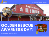 ST. JACOBS FARMERS' MARKET  ARescue  Farmers Market  St. Jacobs  please  GOLDEN RESCUE  AWARNESS DAY!  Sugar #25  Saturday May 26th 7am -4pm  goldenrescue.ca We will be at St. Jacobs Farmers Market TODAY from 7am-4pm. Stop by and see our Volunteers and Golden Ambassadors and learn more about Golden Rescue!  For more information, please click on the link: https://bit.ly/2qP8FXj  #goldenretriever #rescuedog #adoptdontshop