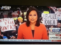 Dank Memes, Clinton, and Own: ST.LOUIS, MO  2:26 PM  LACE POLITICS  SNB  LEUALIZE  THE  2016  KRAB  5:33:05  CLINTON TRUM  LIVE ON MSNBC  LIVE  MSNBC  FALSEHOODS, AND HALF-TRUTHS BEHIND THE CANDIDATES' owN WORDS, 226PM CT LEGALIZE RANCH