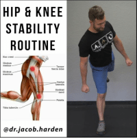 Maximus, Memes, and Control: STABILITY  ROUTINE  Iliac crest  Gluteus  medius  Tensor  fascia latae  Gluteus  maximus  Vastus  lateralis  Iliotibial  band  Patella  Tibia tubercle  ca dr. jacob harden HOW TO FIX YOUR KNEE PAIN Every joint in your body needs a mix of mobility and stability. The knee for example is very mobile in the ↕sagittal plane (flexion-extension), needs quite a bit of stability in the ↔frontal plane (side to side) and a healthy mix in the 🔃transverse plane (twisting). While mobility is inherent to the joint itself, stability tends to rely on the joints above and below. Sticking with our knee example, that frontal and transverse plane stability is created by having adequate ankle mobility and hip control. So if you have knee pain, you most likely need to be addressing the hip, ankle, and foot too. This is an sample routine to build that stability. The progression goes as follows: . 🔼Level 1: Build isolated strength in the hips. 🔼Level 2: Integrate that into multiplanar movements. 🔼Level 3: Load the patterns and increase movement complexity. Use this routine a few times per week to start seeing you knee pain disappear! . 🎵 - King Sol - Ready to Go . MyodetoxOrlando Myodetox