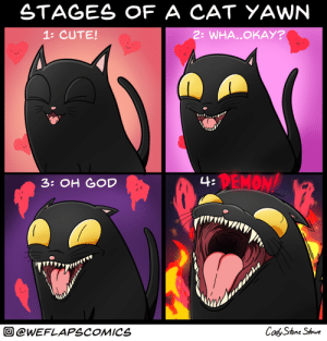 Its like John Carpenters The Thing [OC]: STAGES OF A CAT YAWNN  1: CUTE!  2: WHA..OKAY?  DEMON  3: OH GOD  @WEFLAPSCOMICS Its like John Carpenters The Thing [OC]