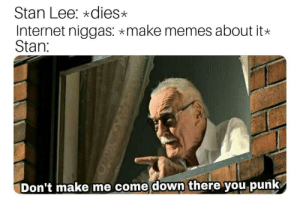 Internet, Memes, and Stan: Stan Lee: *dies>x  Internet niggas: make memes about it*  Stan:  Don't make me come down there you punk You will be missed F via /r/memes https://ift.tt/2QFgg8E