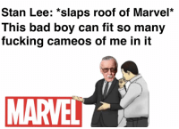 35 Great Pics And Memes to Improve Your Mood: Stan Lee: *slaps roof of Marvel*  This bad boy can fit so many  fucking cameos of me in it  MARVELL 35 Great Pics And Memes to Improve Your Mood
