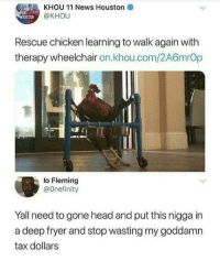 Head, News, and Chicken: STAND  KHOU 11 News Houston  OUSTON  @KHOU  Rescue chicken learning to walk again with  therapy wheelchair on.khou.com/2A6mrOp  lo Fleming  @Onefinity  Yall need to gone head and put this nigga in  a deep fryer and stop wasting my goddamn  tax dollars