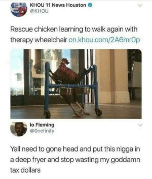 Dank, Head, and Memes: STAND  KHOU 11 News Houston  OUSTON  @KHOU  Rescue chicken learning to walk again with  therapy wheelchair on.khou.com/2A6mrOp  lo Fleming  @Onefinity  Yall need to gone head and put this nigga in  a deep fryer and stop wasting my goddamn  tax dollars Save the chicken ! by cleevethagreat MORE MEMES