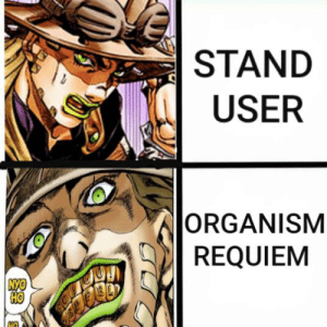 Just Think About It: STAND  USER  ORGANISM  REQUIEM  NYO Just Think About It