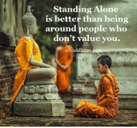 Being Alone, Memes, and Buddhism: Standing Alone  fis better than being  around people who  don't value you.  e-buddhism
