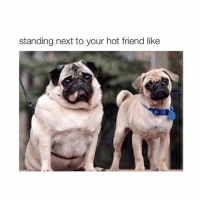Im the hot one: standing next to your hot friend like Im the hot one