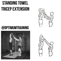 Memes, 🤖, and Abs: STANDING TOWEL  TRICEPEXTENSION  @OPTIMUMTRAINING STANDING TOWEL TRICEP EXTENSION Main Muscle: Triceps Secondary Muscle: Forearms Exercise Type: Isolation, Push Equipment Required: Towel, Partner This unique triceps exercise utilizes a training method known as manual resistance training, this exercise requires a partner and a towel to isolate the triceps. The new motion and resistance will help you build bigger arms by blasting the triceps. Instructions: 1⃣ Stand with your feet shoulder width apart, your back straight, and your abs drawn in. 2⃣ Hold a towel or rope facing up behind your head. 3⃣ Have a partner hold the towel taught during the exercise so that the resistance is constant. 4⃣ Lower your forearms down until they reach your biceps, then slowly raise your arms back up to the starting position. Tip: 1⃣ Keep your elbows close to your head during the exercise. OptimumTraining