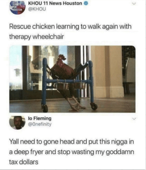 Head, News, and Chicken: STANDSKHOU 11 News Houston  OUSTON  @KHOU  Rescue chicken learning to walk again with  therapy wheelchair  lo Fleming  @Onefinity  Yall need to gone head and put this nigga in  a deep fryer and stop wasting my goddamn  tax dollars Deep fried