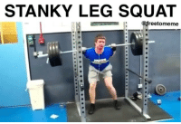 Stanky Leg Squat via @freetomeme: STANKY LEG SQUAT Stanky Leg Squat via @freetomeme