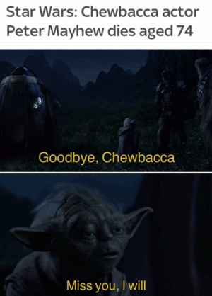 We've lost a legend by SnaxFoods MORE MEMES: Star Wars: Chewbacca actor  Peter Mayhew dies aged 74  Goodbye, Chewbacca  Miss you, I will We've lost a legend by SnaxFoods MORE MEMES